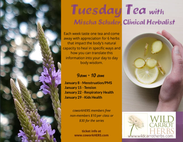 Tuesday Tea Time with Mischa Schuler
